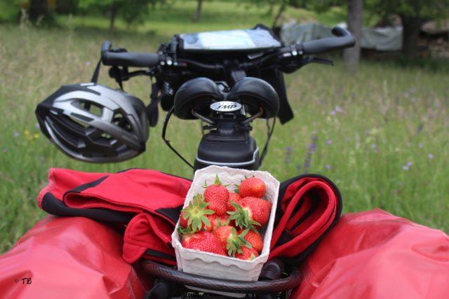 Fahrradtour Bodensee